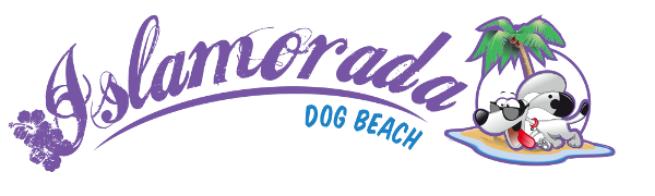 Islamorada Dog Beach